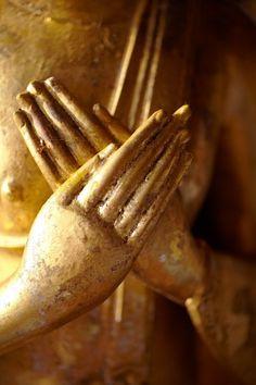 Yogalavie - gratitude