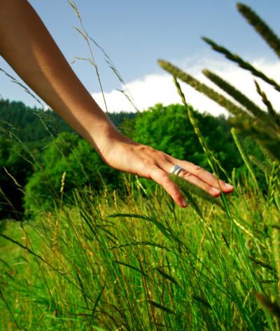 Yogalavie - Apprendre à ressentir